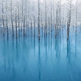 Blue Pond - The WallPaper for Apple Inc. by Kent Shiraishi (KentShiraishi) on 500px.com