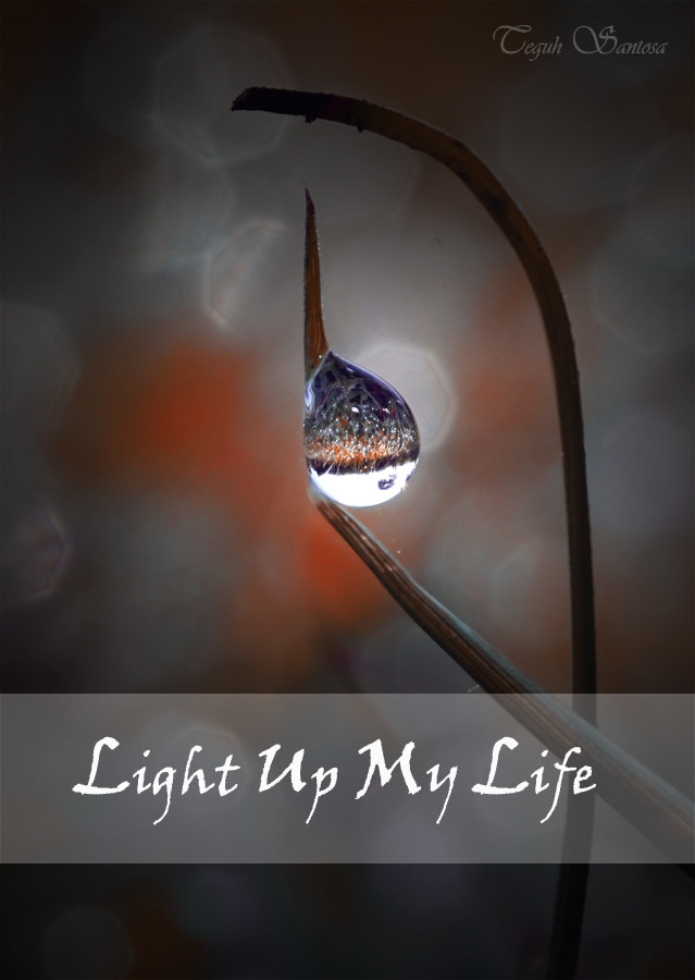 Photograph You Light Up My Life by teguh santosa on 500px