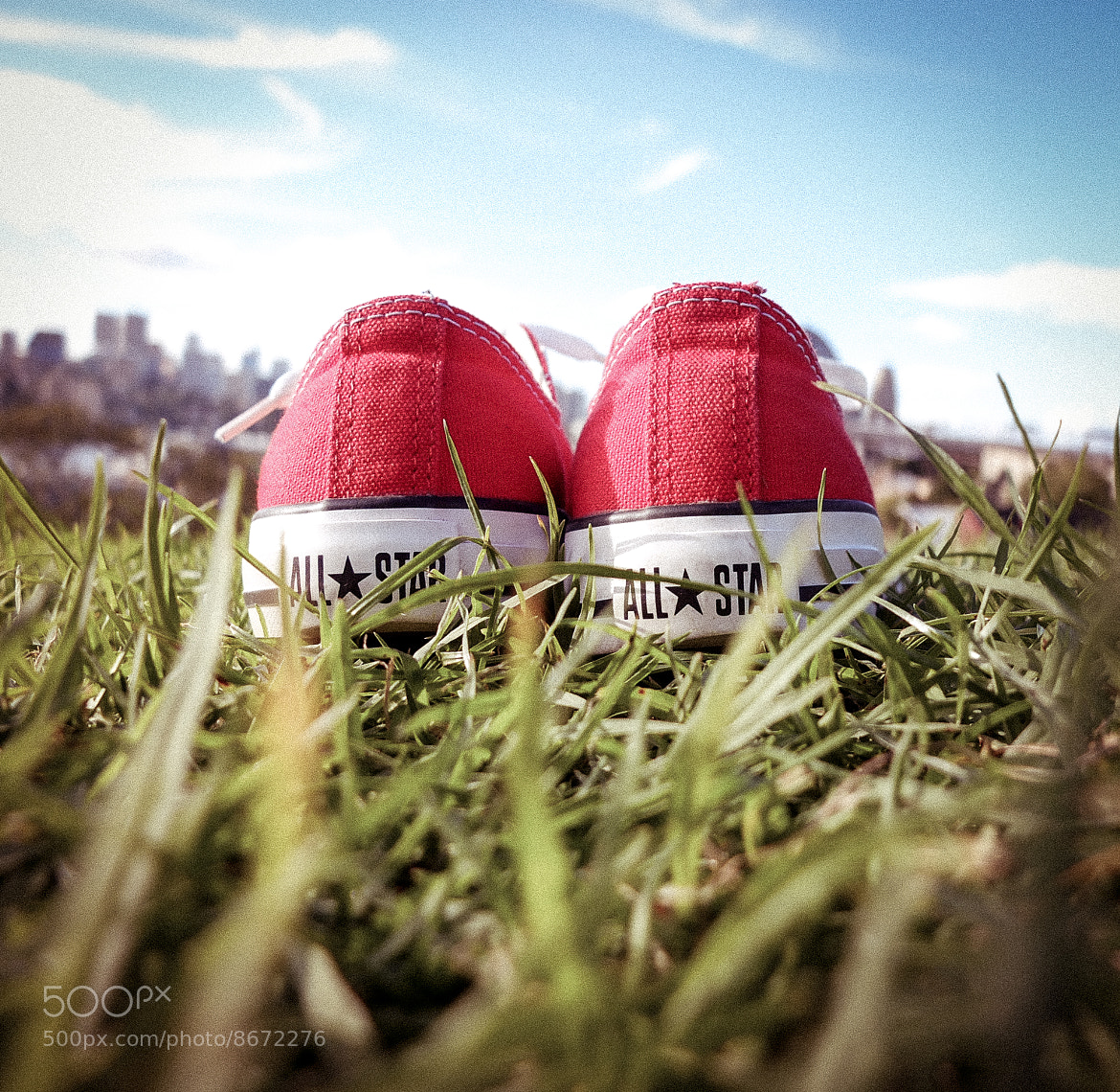 Photograph Just chillax by Inny So on 500px