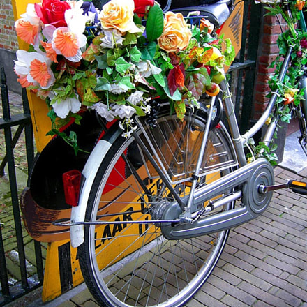 DUTCH FLOWER-POWER BIKE, some FUN for A MONDAY...