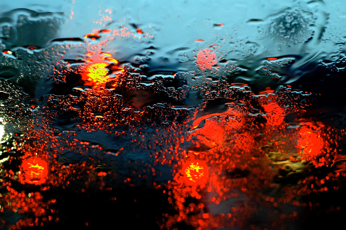 Photograph City rain by Manuel Alfonso on 500px