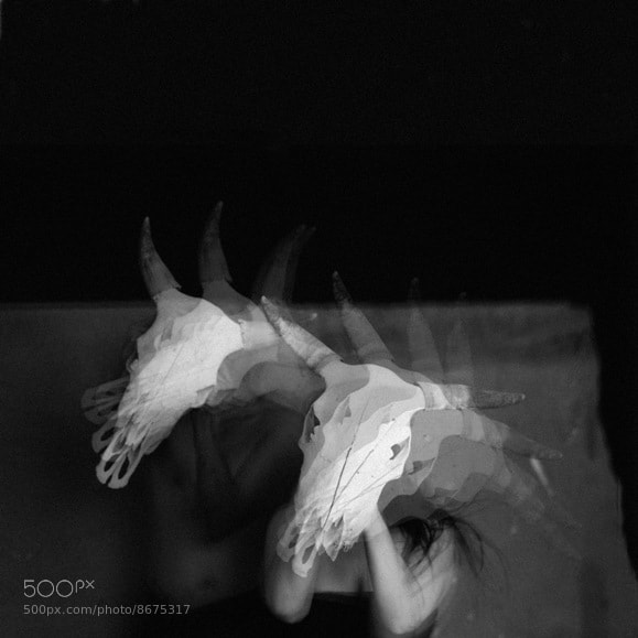 Photograph The spirit of the Ox by Fred Melot on 500px