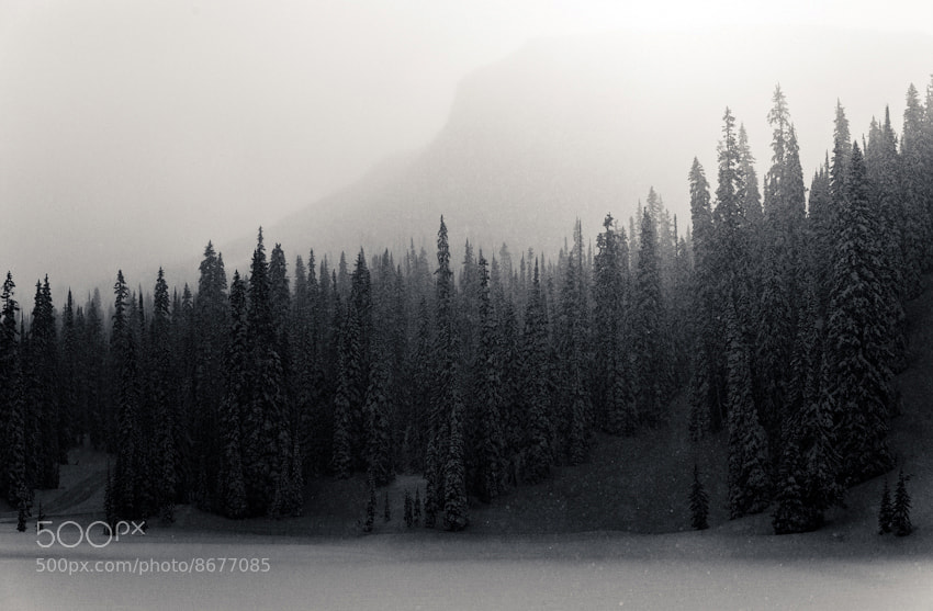 Photograph Monashee by Pally  Learmond on 500px