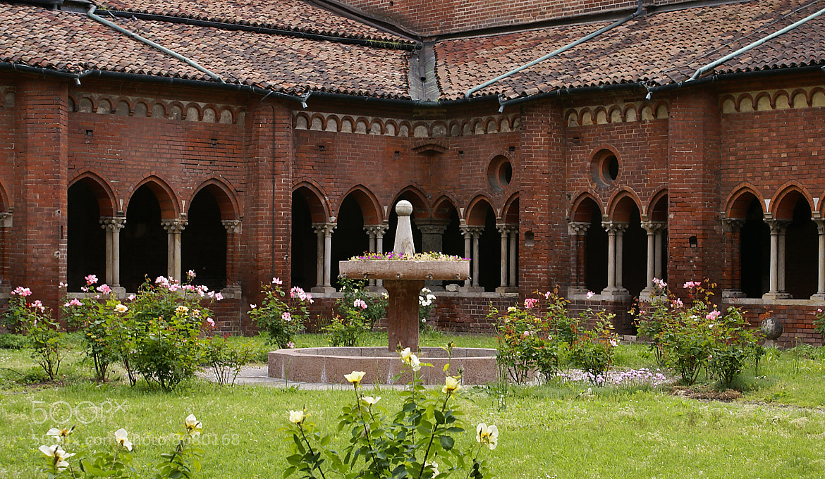Photograph Cloister & roses n°2 by Maria Laura Spini on 500px