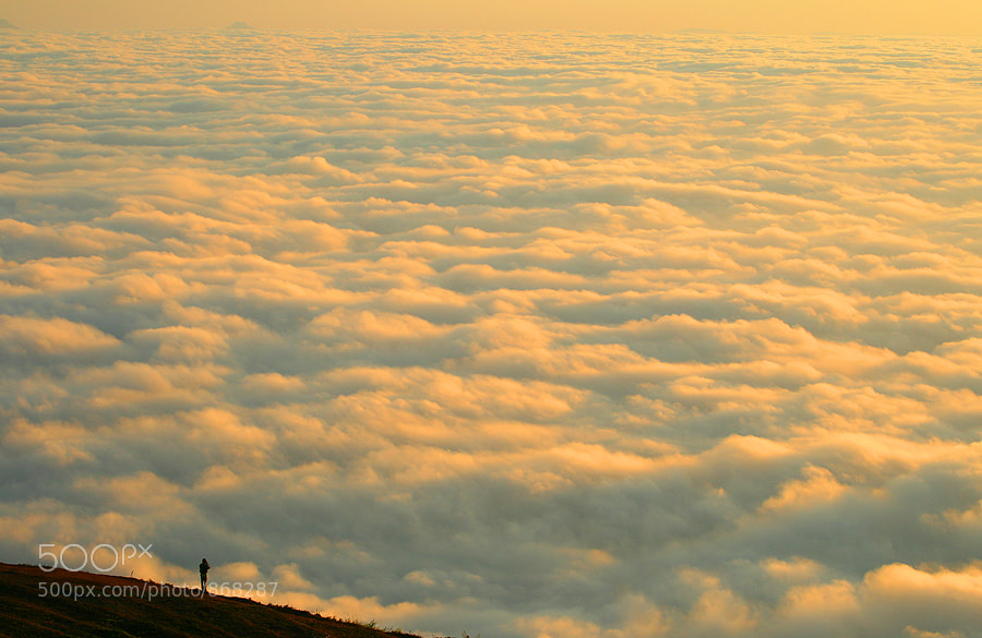 Photograph The Sea of Mist by MooFiGhT A. on 500px
