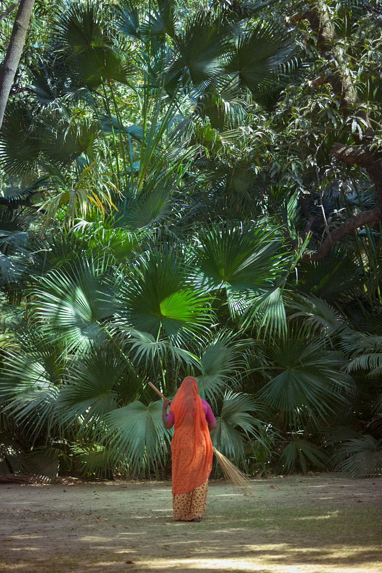 Photograph Keeping the jungle at bay by Mark Andrews on 500px