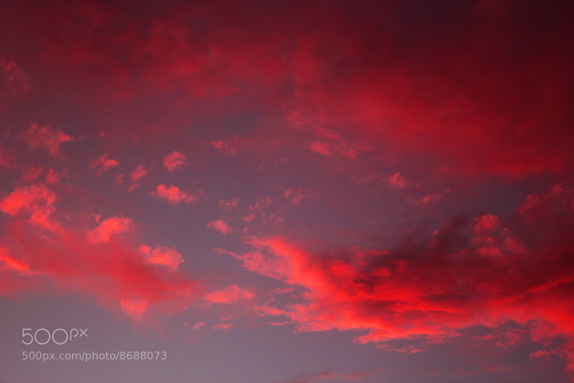 Photograph Shepherds Delight!!  by Jacob Harris on 500px