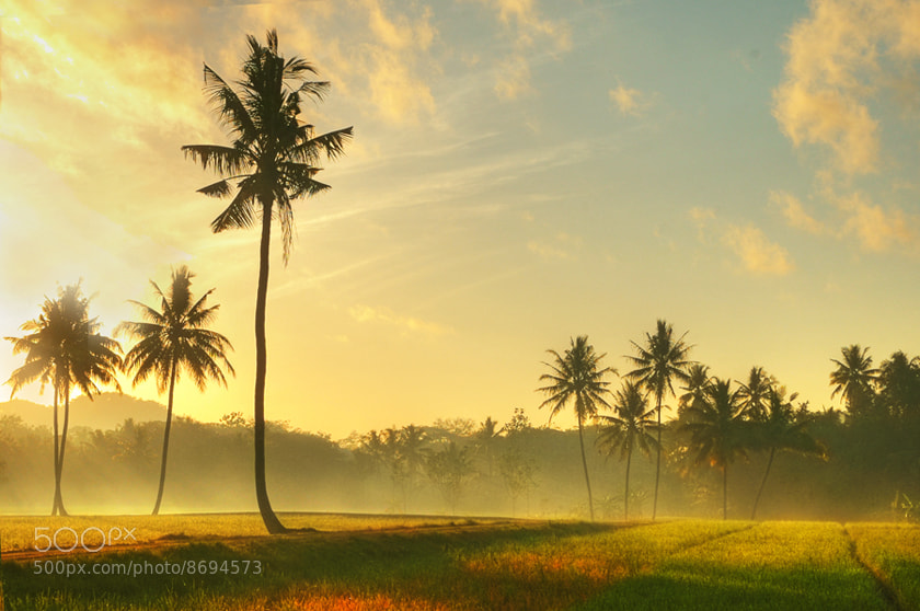 Photograph MORNING MOOD by Edi Wibowo on 500px