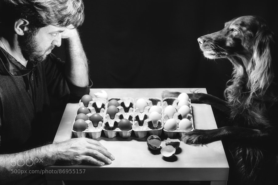 Photograph Chess Game by Konstantin Nabatnikov on 500px