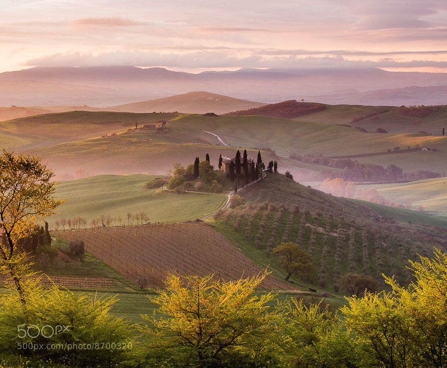 Photograph Val d'Orcia Dreams by Hans Kruse on 500px