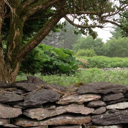Irish countryside..