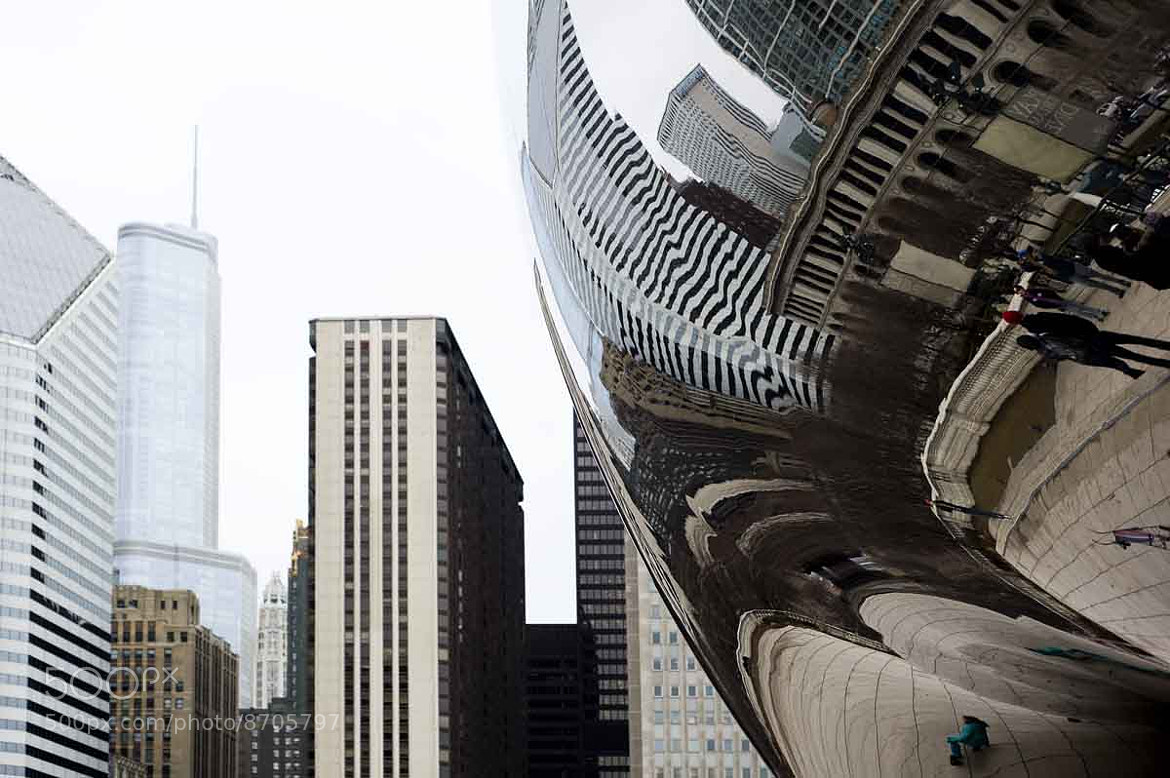 Photograph The Bean by Laura de Graaff on 500px