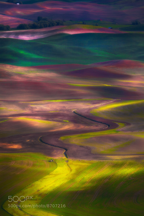 Photograph Tapestry Of Colors In The Palouse by Kevin McNeal on 500px