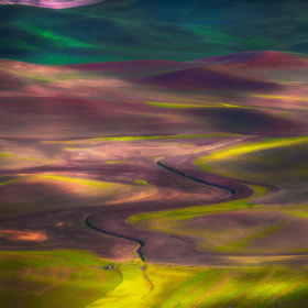 Tapestry Of Colors In The Palouse by Kevin McNeal (kevinmcneal)) on 500px.com