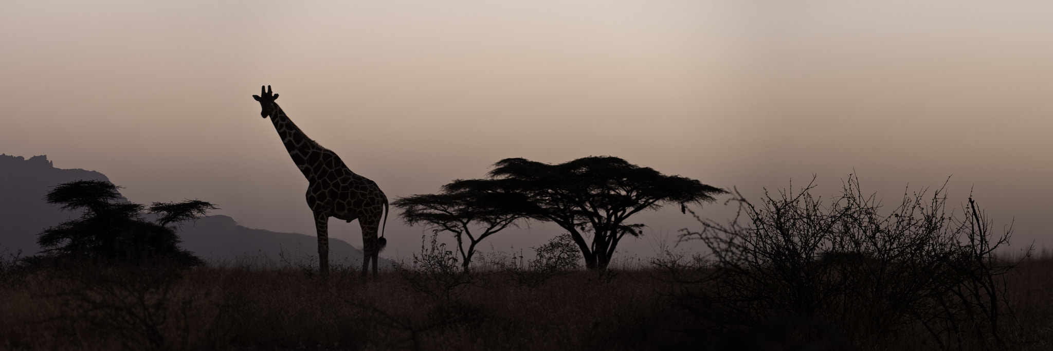 Photograph Shapes of Africa by Antony Blake on 500px