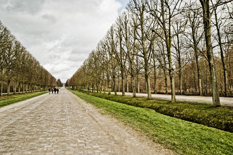 Photograph Versailles by Gabriel Lima on 500px