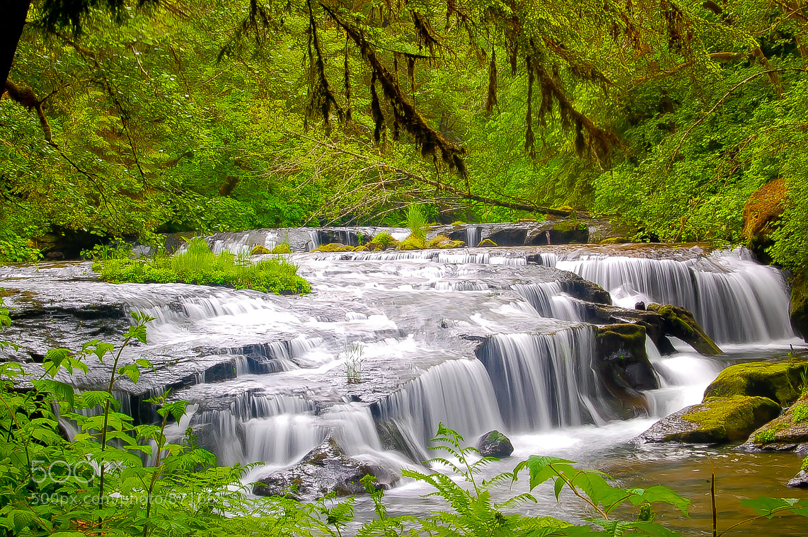 Photograph Sweet Creek Falls by Melani Johnson on 500px