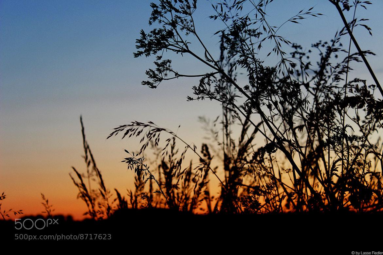 Photograph Burning Horizon by Lasse Fiedler on 500px