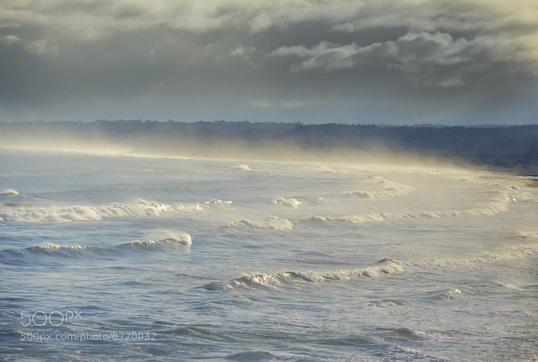 Photograph Morning mist on a cold beach by RICARDO OLGUIN, MD on 500px