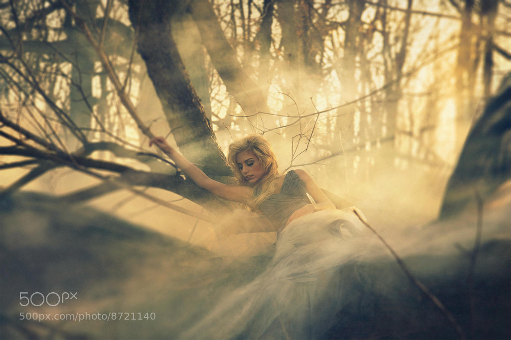 Photograph Lucid Dreaming by Amelia Fletcher on 500px