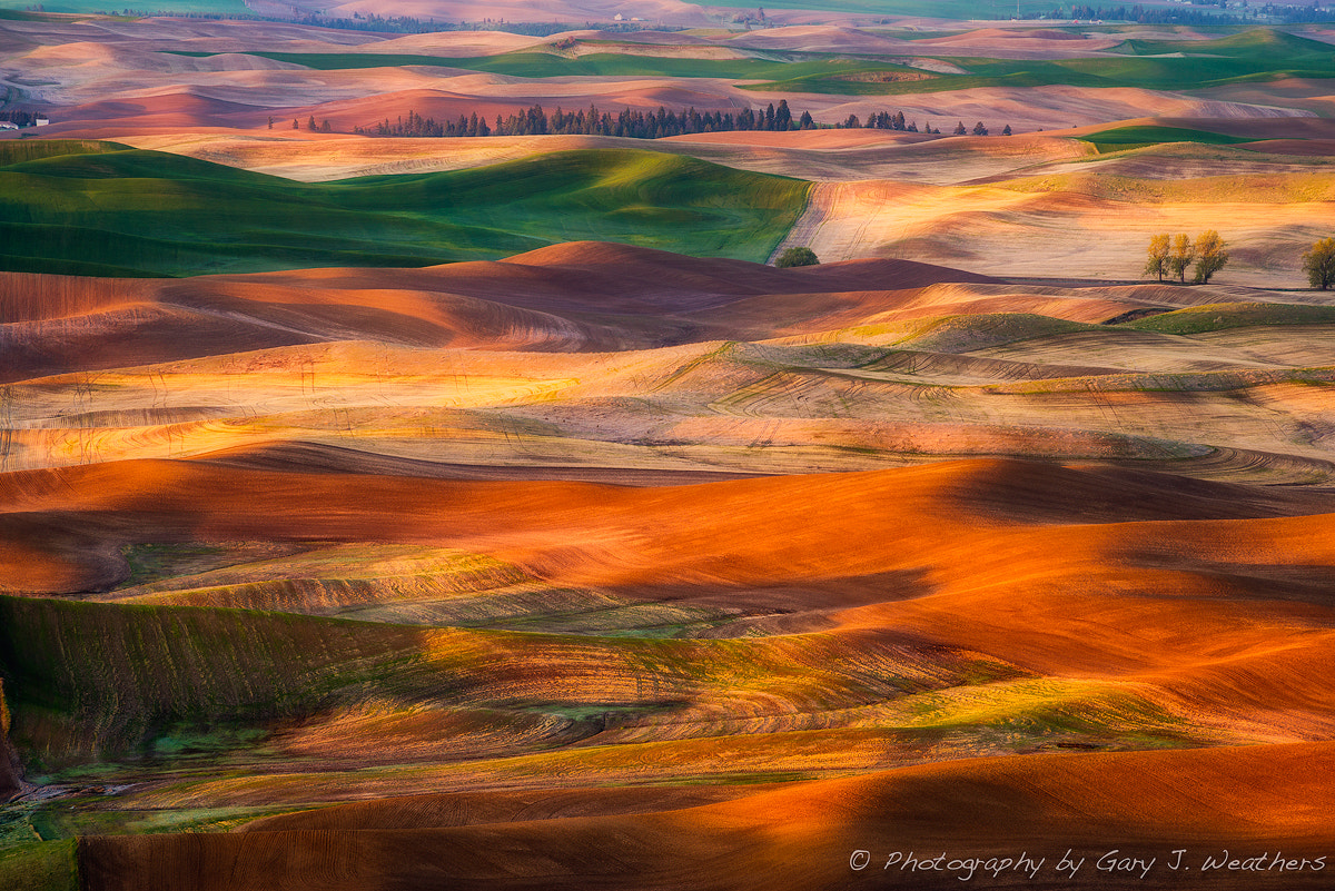 Photograph Tapestry by Gary Weathers on 500px