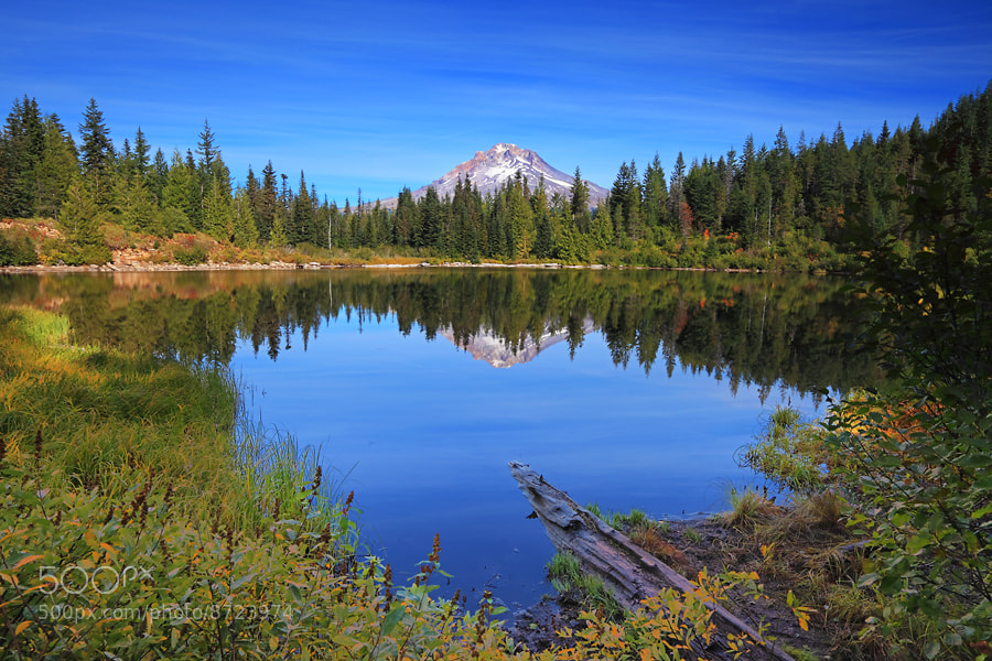 Photograph Where the Heart Is by Tula Top on 500px