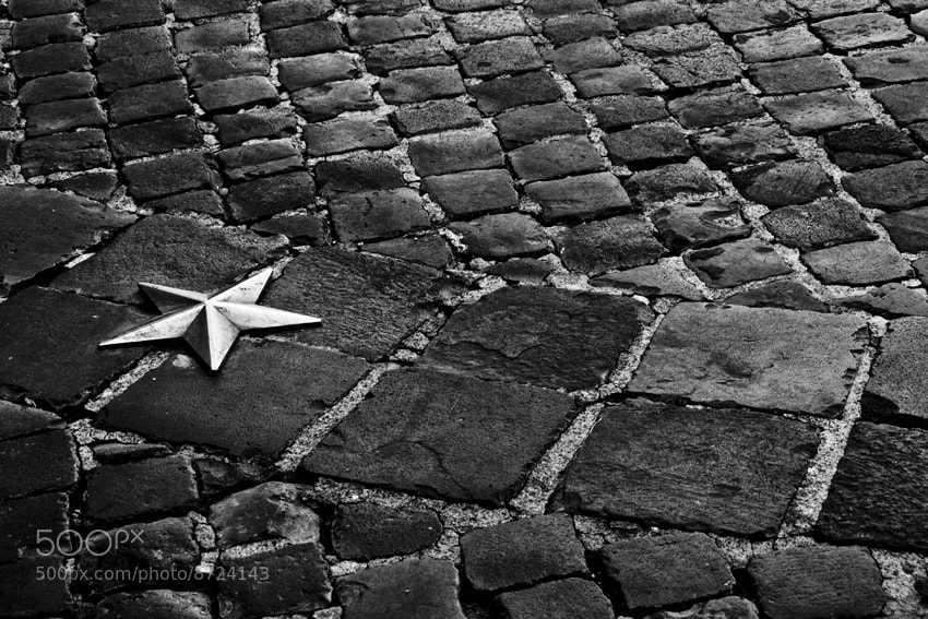 Photograph Fall is a star by Massimo Renzi on 500px