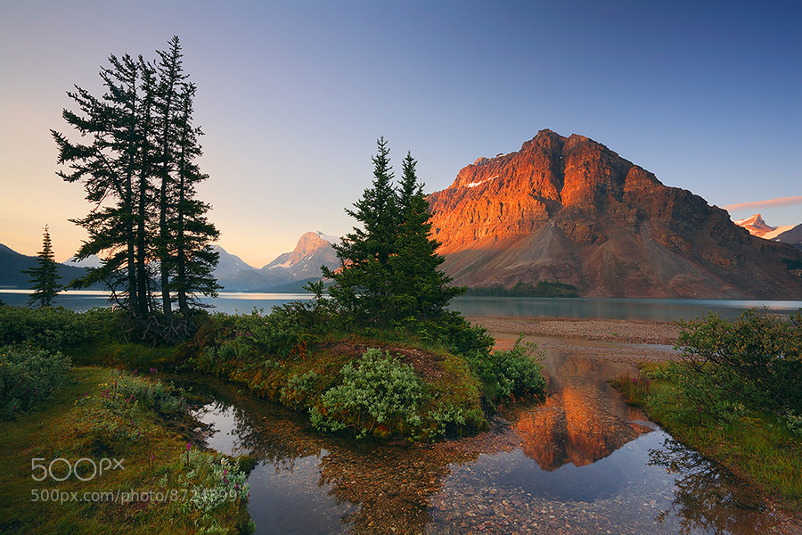 Photograph Crowfoot Mountain Reflection by Henry Liu on 500px