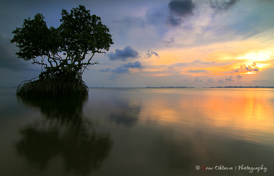 Photograph sunset lover by Dewi Oktavia on 500px