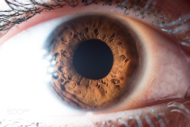 Photograph Infinity of the human eye by Ilya Smirnov on 500px