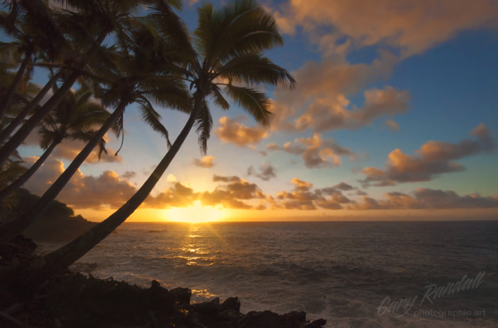 Photograph Tropicana Morning by Gary Randall on 500px