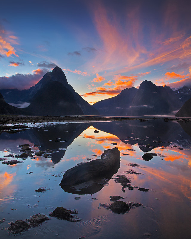 Photograph Painted Milford by Dylan Toh  & Marianne Lim on 500px