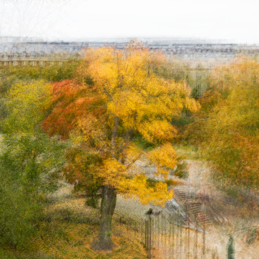 Autumn in kaivopuisto