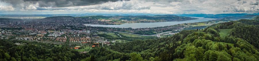 Swiss Views IX, Zurich