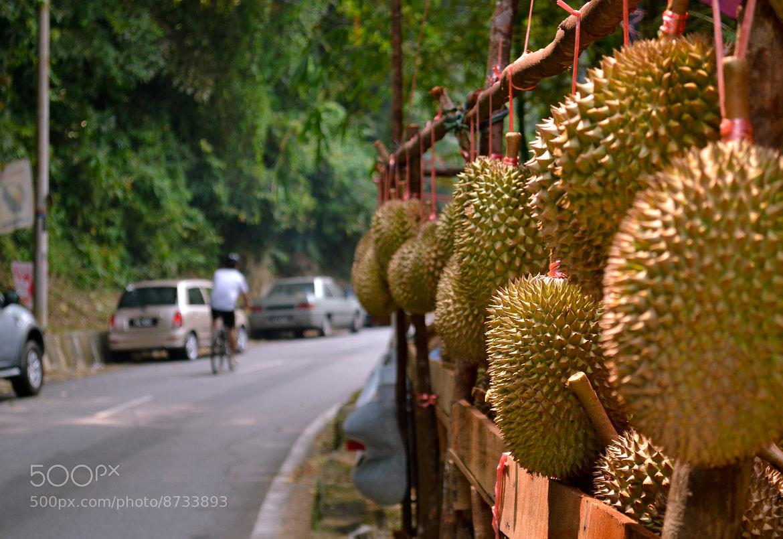 Photograph The King of Fruits - Durian by Khairil Shahmi Shaidun on 500px