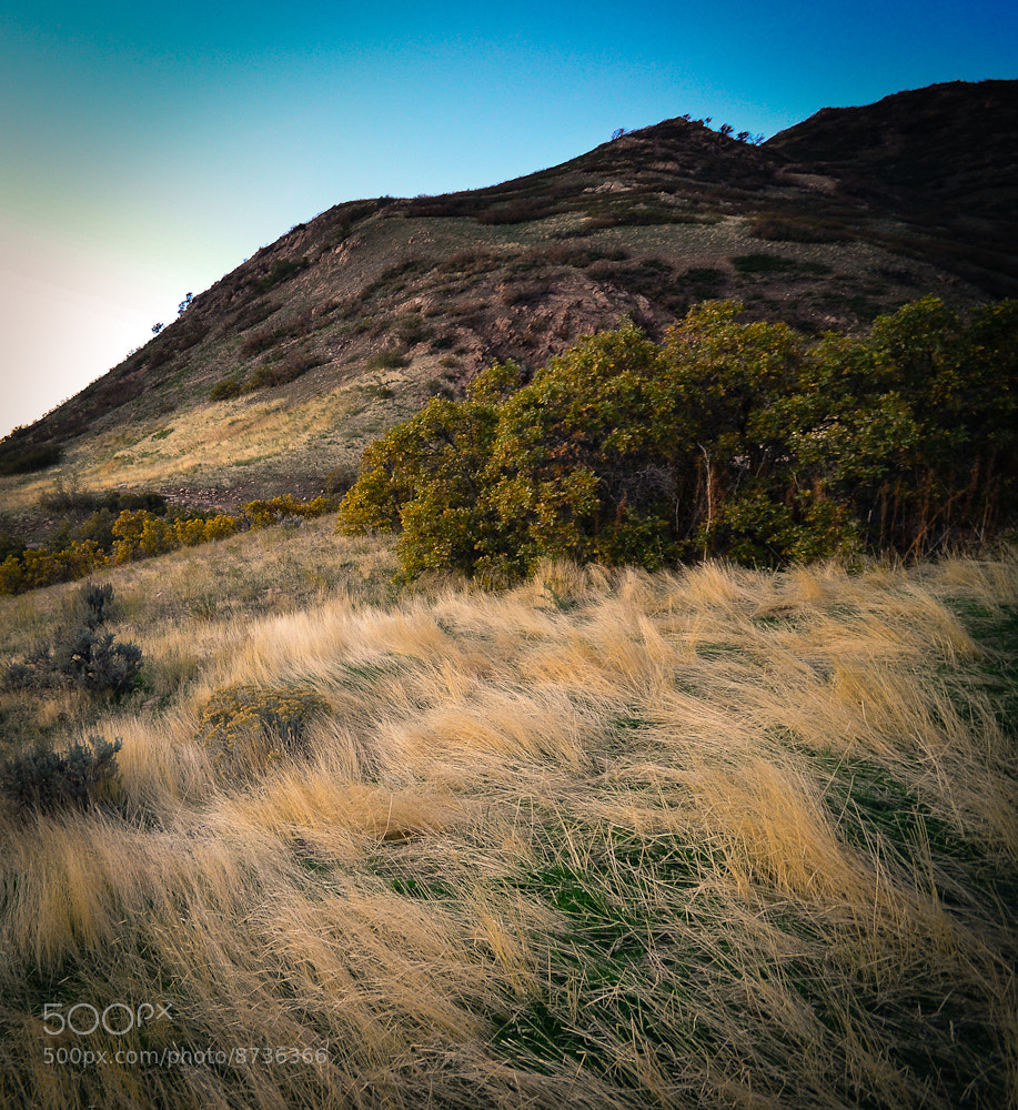 Photograph Foothills by Geof Crowl on 500px