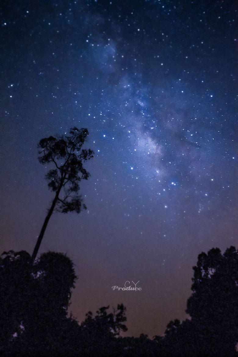 Photograph Milkway in the Dark by CY Produce on 500px