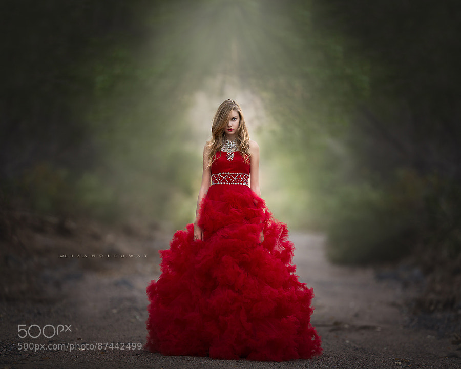 Photograph Scarlet Obsession by Lisa Holloway on 500px