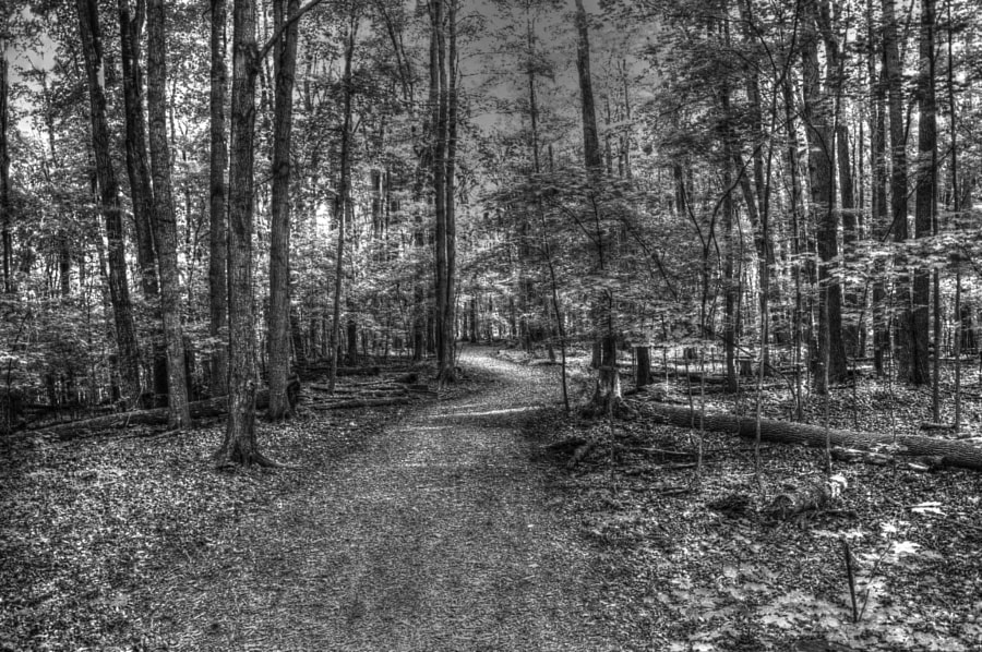 My first black & white HDR