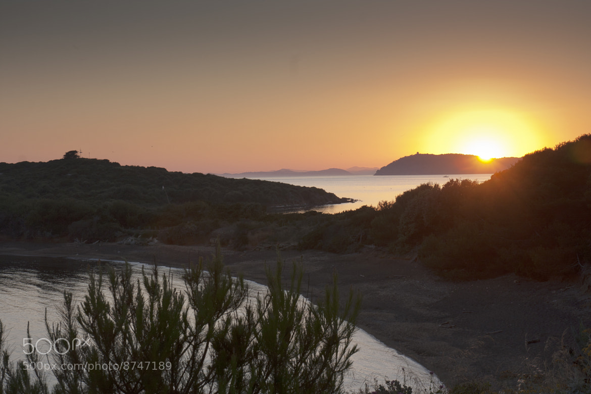 Photograph 4 Sunset in Porquerolles by Tony Lodola on 500px