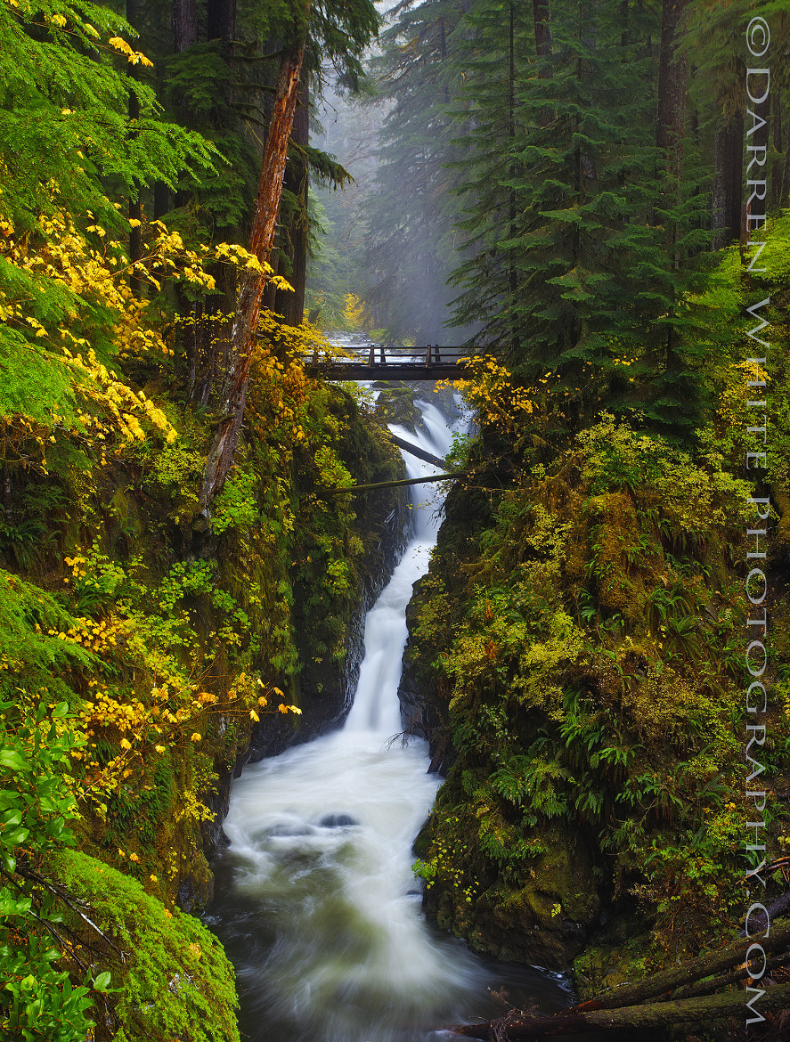 Photograph Sol Duc Falls by Darren  White on 500px