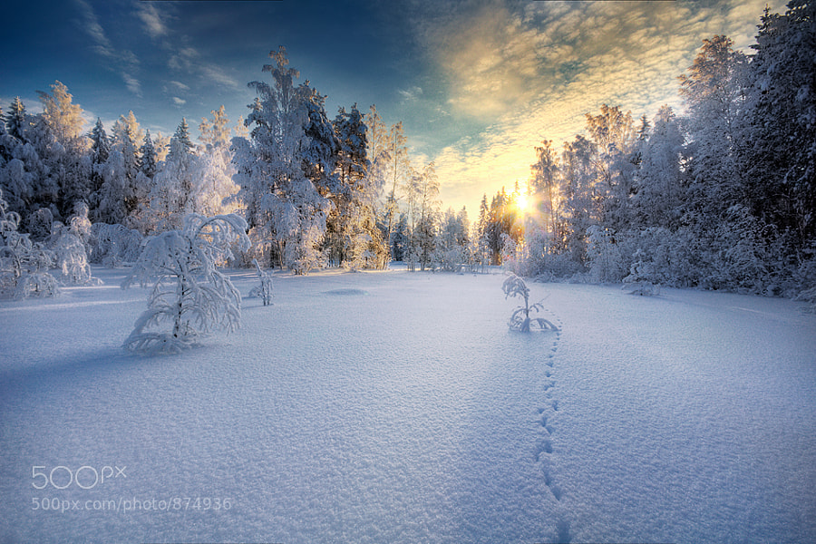 Winter by Mikko Lagerstedt (Latyrx)) on 500px.com