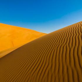 Terracotta Desert