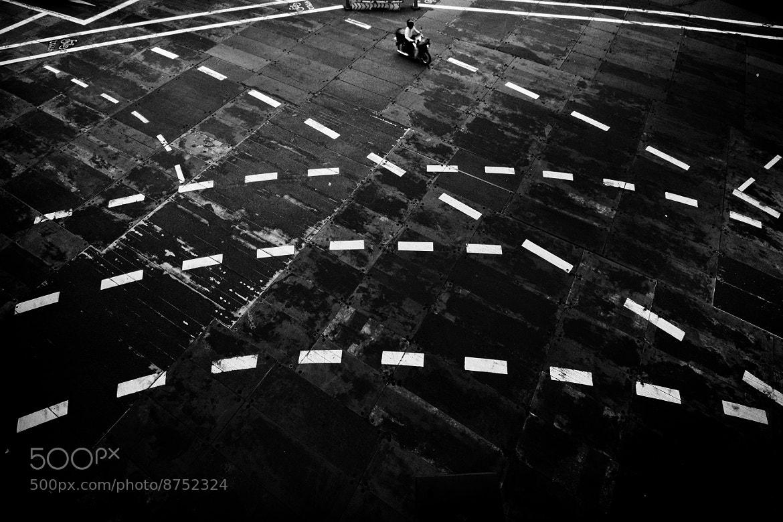 Photograph Crossing by Kouji Tomihisa on 500px