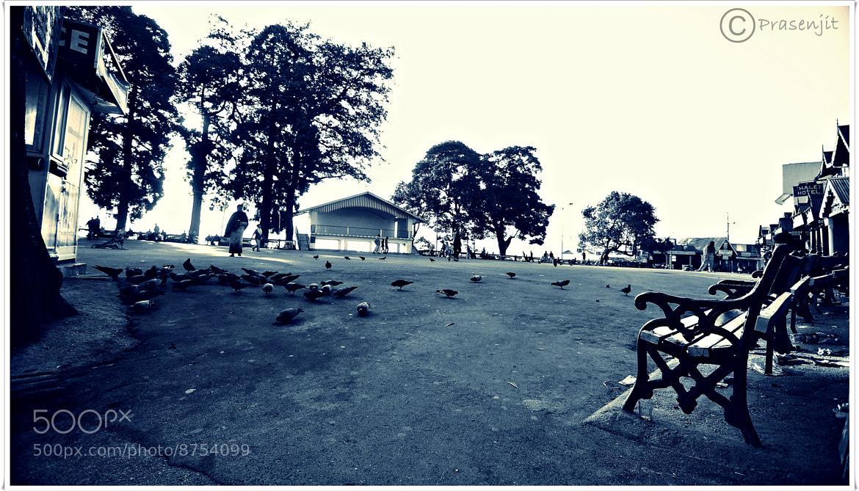 Photograph The Mall - Darjeeling by Prasenjit Banerjee on 500px