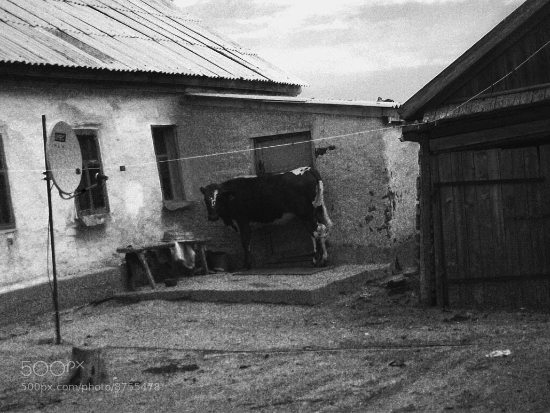 Photograph village by Lyudmila Chursina on 500px