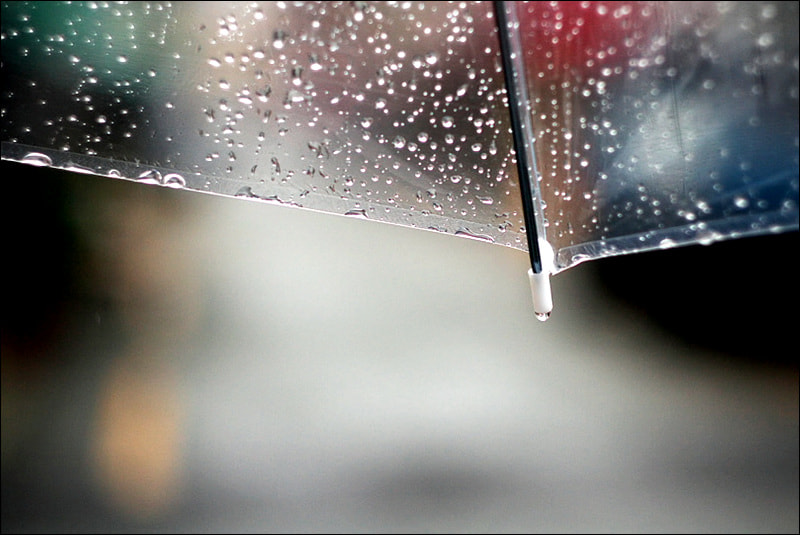 Photograph Rain drop by D W Kim on 500px