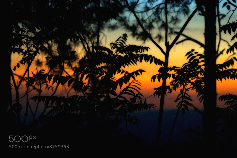 Photograph Colors ..... by Pilar Bau on 500px