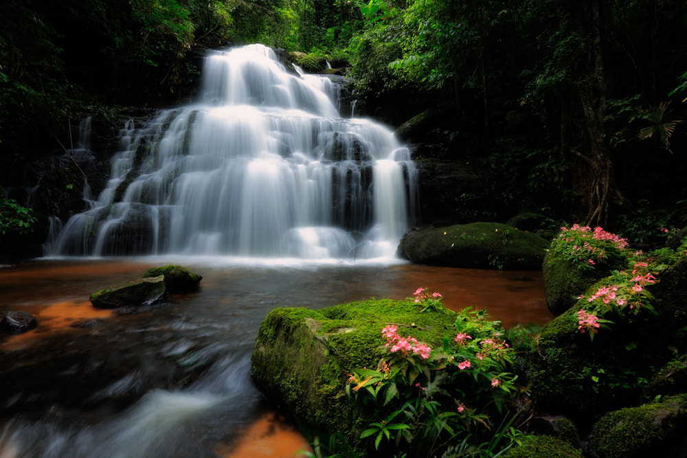 Photograph Mann Dang Waterfall, Thailand by fllay on 500px