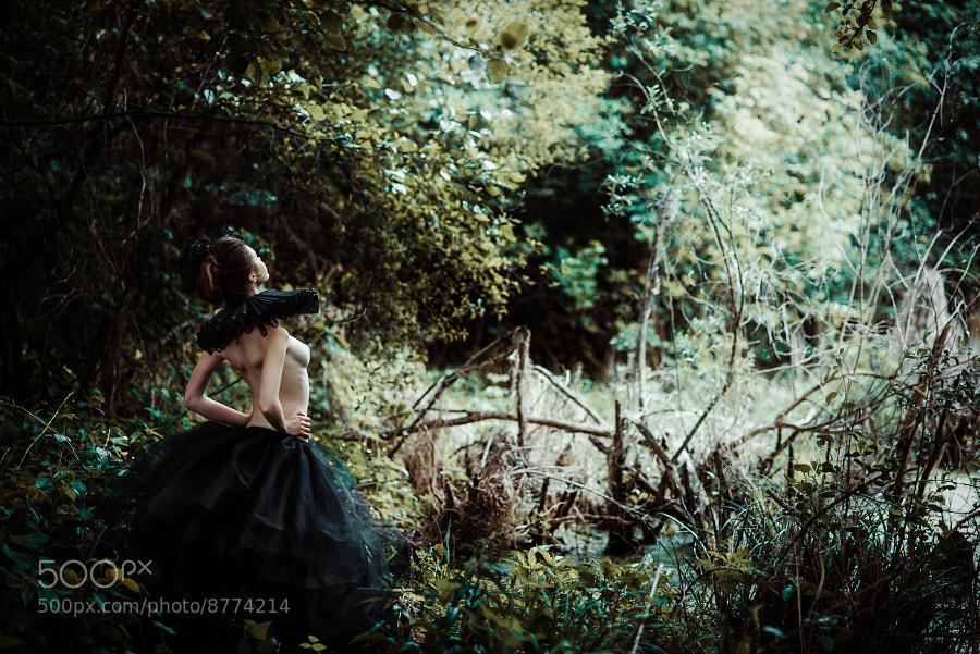 Untitled by Сергей Шарков (nallien) on 500px.com